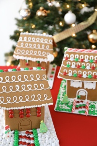 Gingerbread-House-1-JWB-595